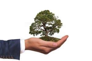 Environmental Consultancy Liverpool
