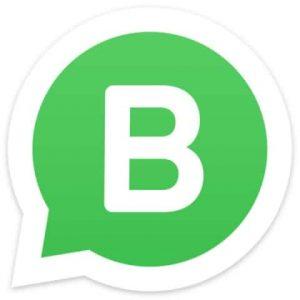 WhatsApp DoLocal Contact