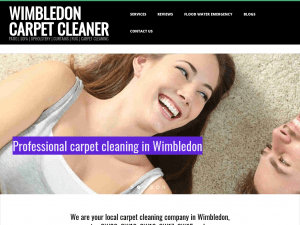 Wimbledon Carpet Cleaner Website